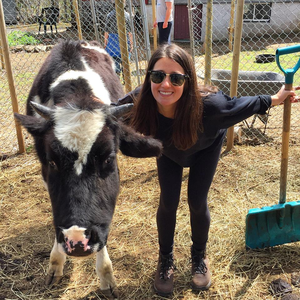 Katie Conklin, a vegan and animal advocate, poses with a cow. Conklin spent $230 to have 'King Louis' the lobster returned to the Bay of Fundy.